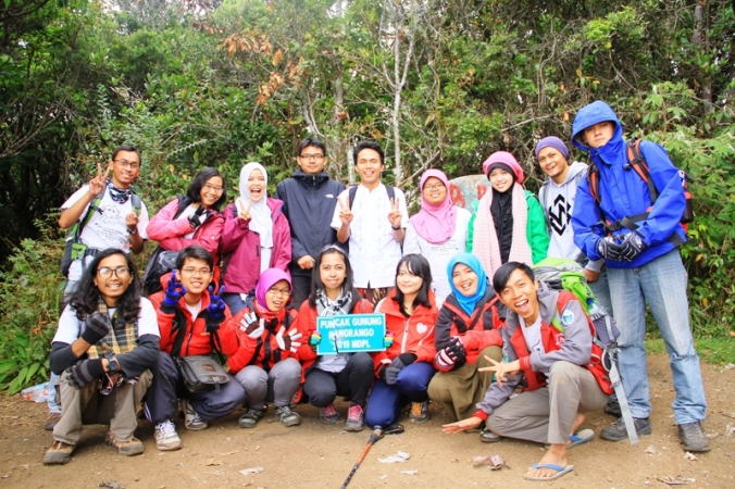 Puncak Gunung Pangrango